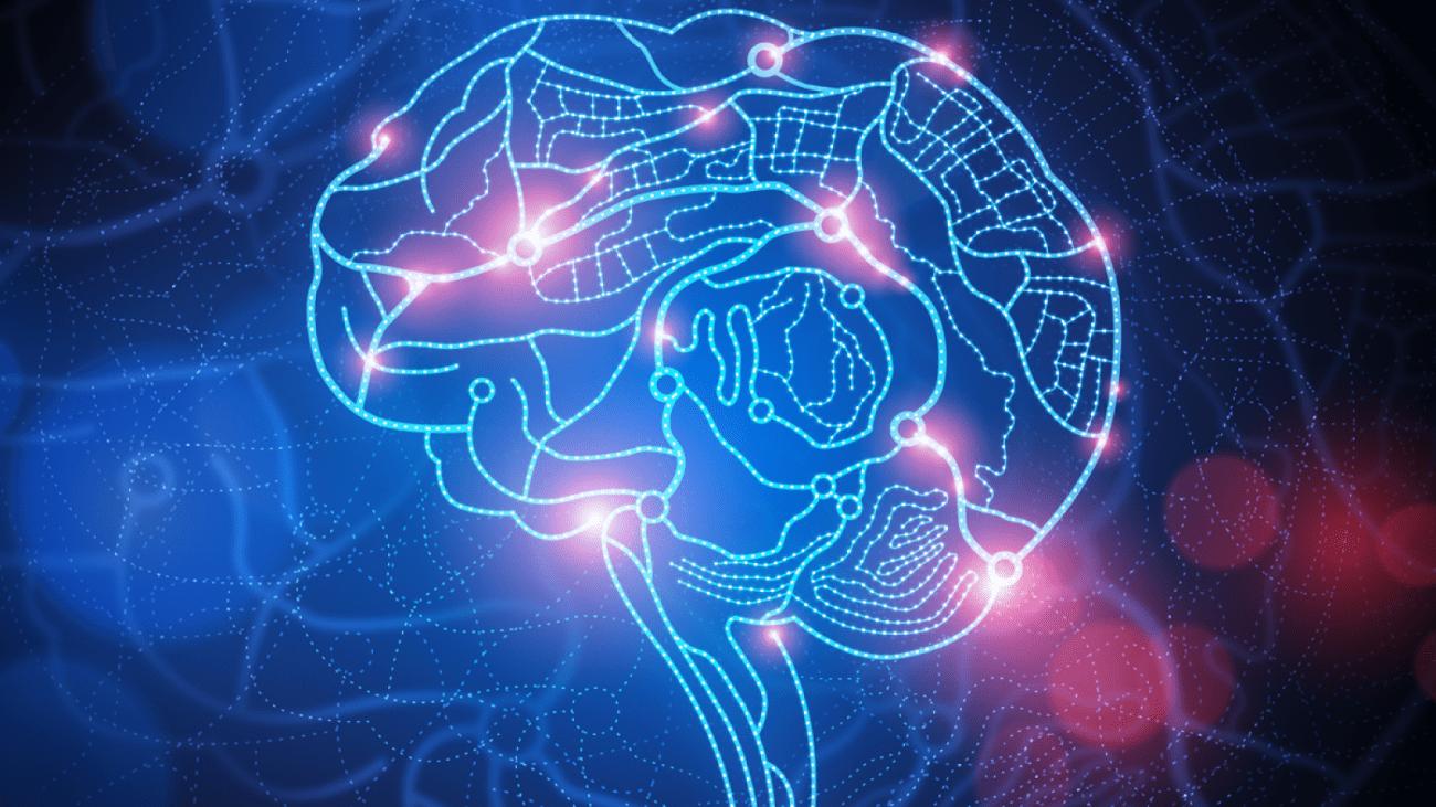 можно ли вернуть к жизни мертвый мозг