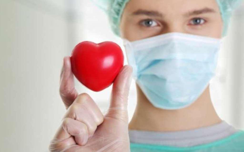 обнаружен белок сдерживающий чрезмерный рост сердца
