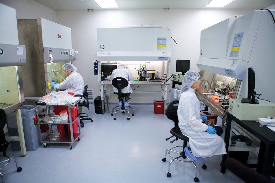 3D-печать органов
