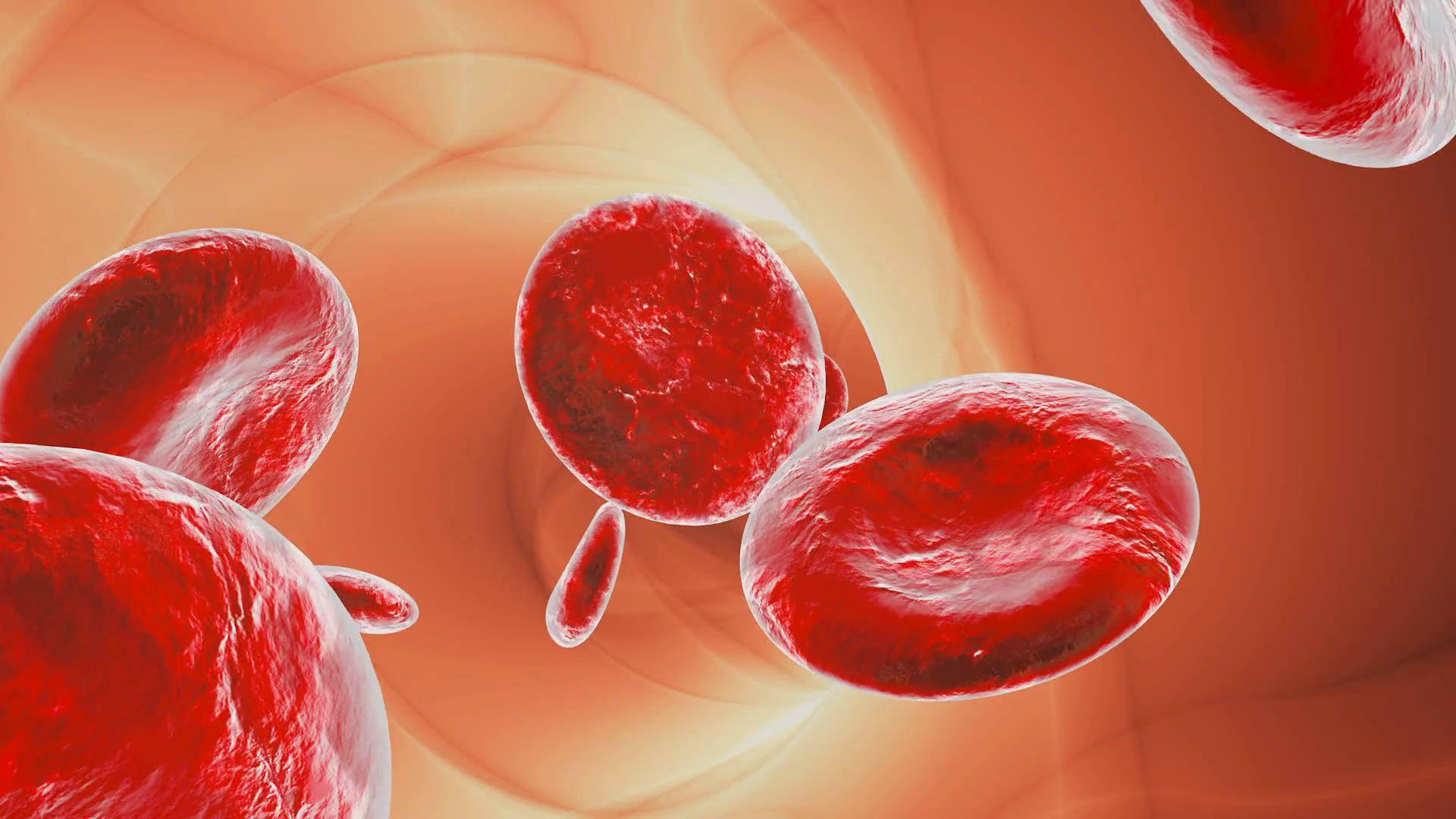 Сингапурские ученые научились делать клетки крови из клеток кожи