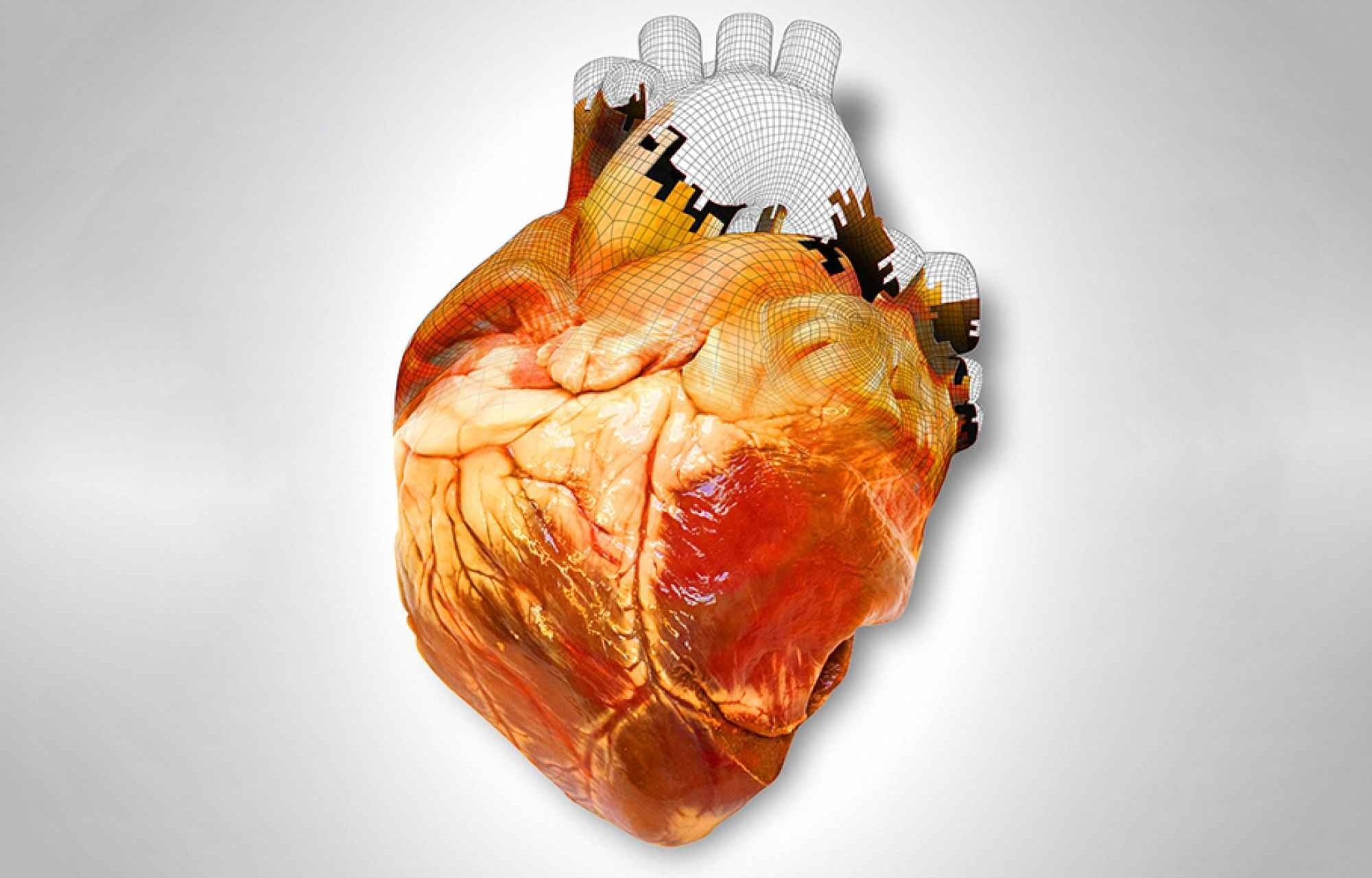 3D-печать органов: революция в медицине?