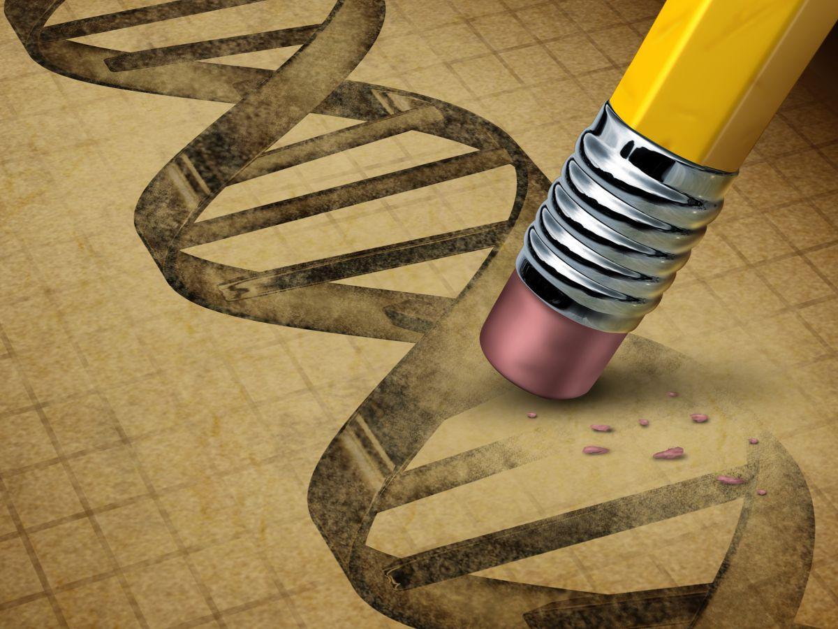 эпоха синтетической биологии наступила