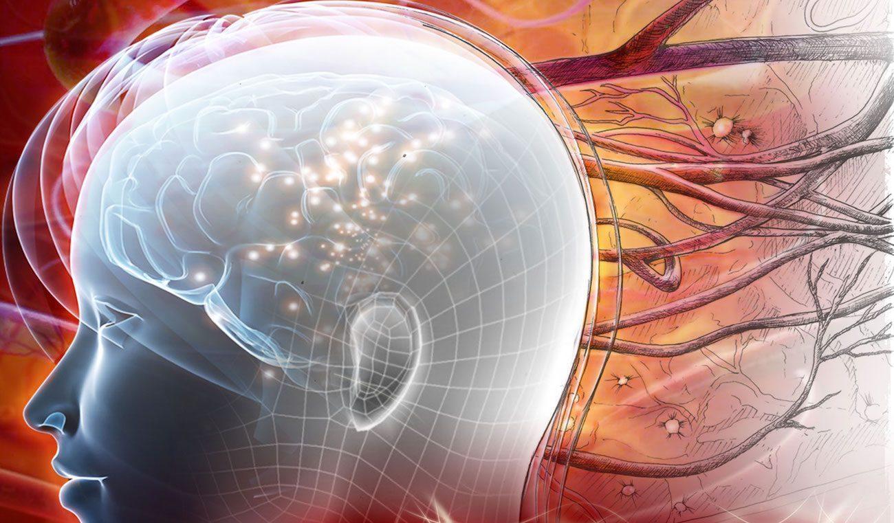 Нейроны, выращенные из стволовых клеток, могут заменить поврежденные области головного мозга