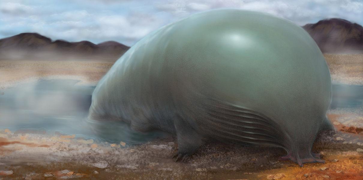 биологи создали новую форму жизни, соединившую кремний и углерод