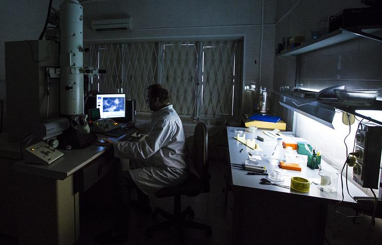 ученые из Красноярска создали биополимерные пластыри