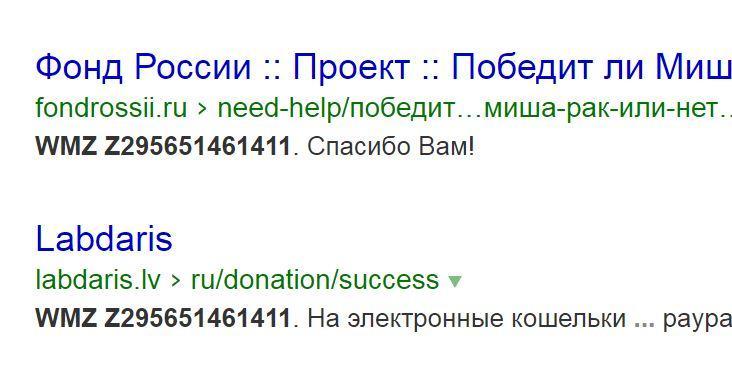 «Благотворительный фонд России» вызвал подозрения благотворителей и СМИ