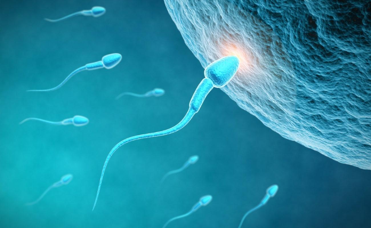 придумано универсальное средство контрацепции для мужчин и женщин