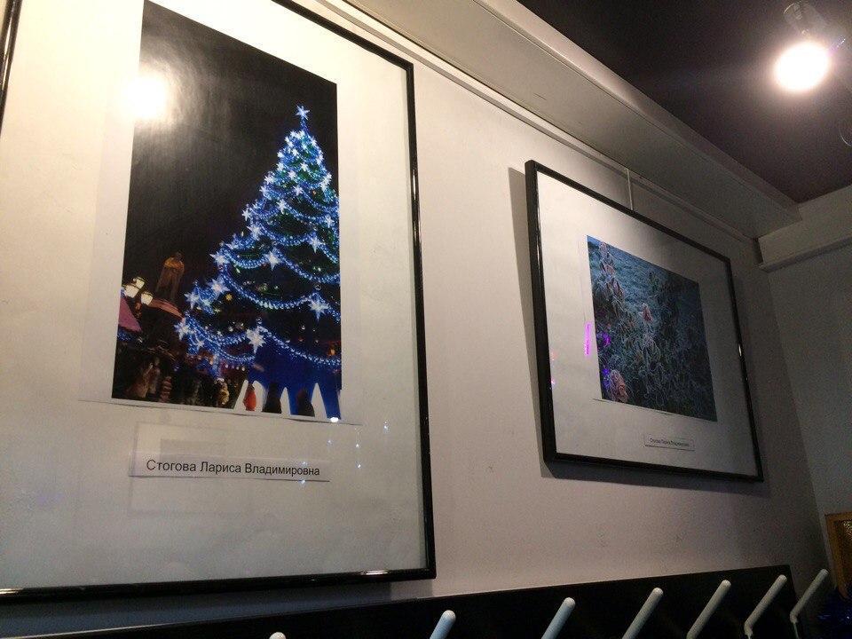 В Доме книги «Медведково» открылась фотовыставка «Новогоднее чудо»