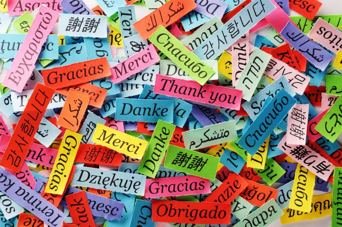 Дети узнают разницу между языками уже в возрасте 20 месяцев