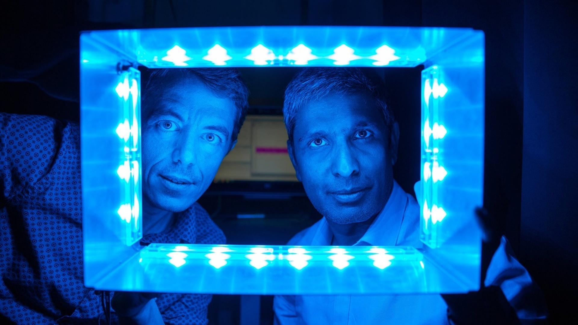 Синий свет стимулирует иммунитет