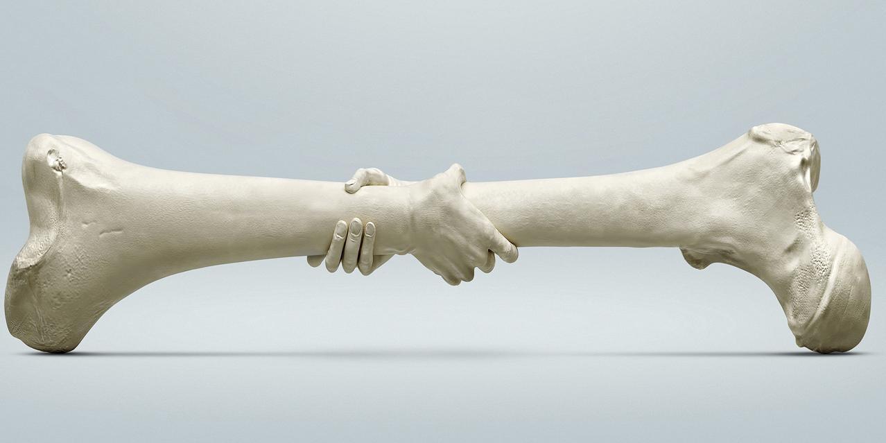 Жидкая кость — новое вещество, которое может полностью восстановить поврежденную костную ткань
