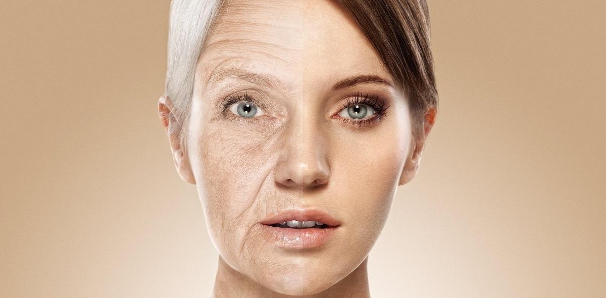 российские учёные написали софт для поиска лекарства против старения