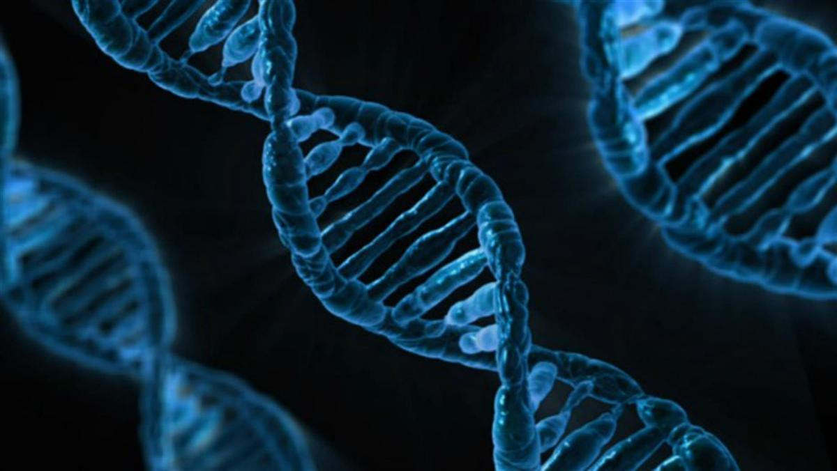 анализ геномов