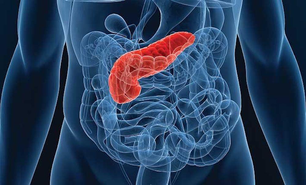 бионическая поджелудочная железа