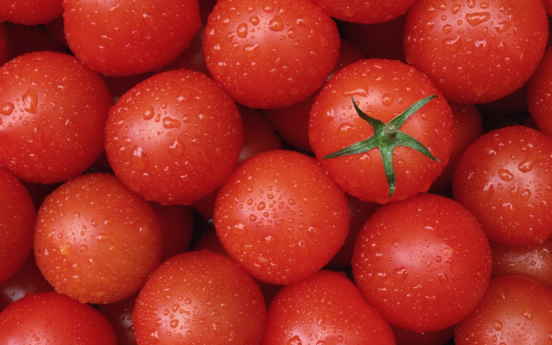ученые нашли гены, ответственные за вкусовые параметры помидоров