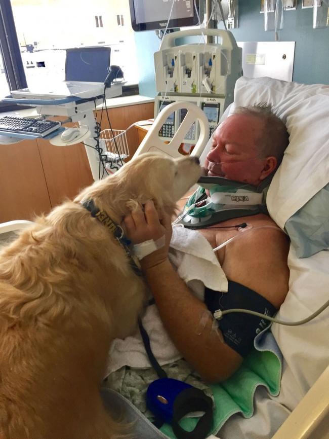 Собака спасла жизнь парализованному хозяину
