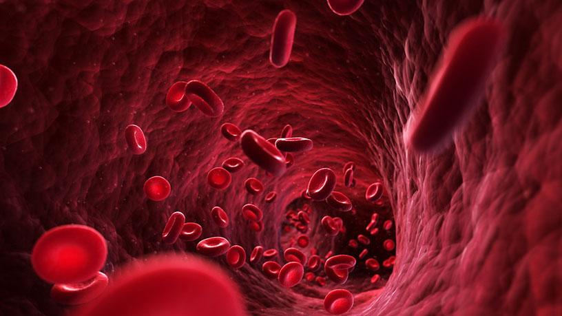 гельминт заразил своего хозяина раком