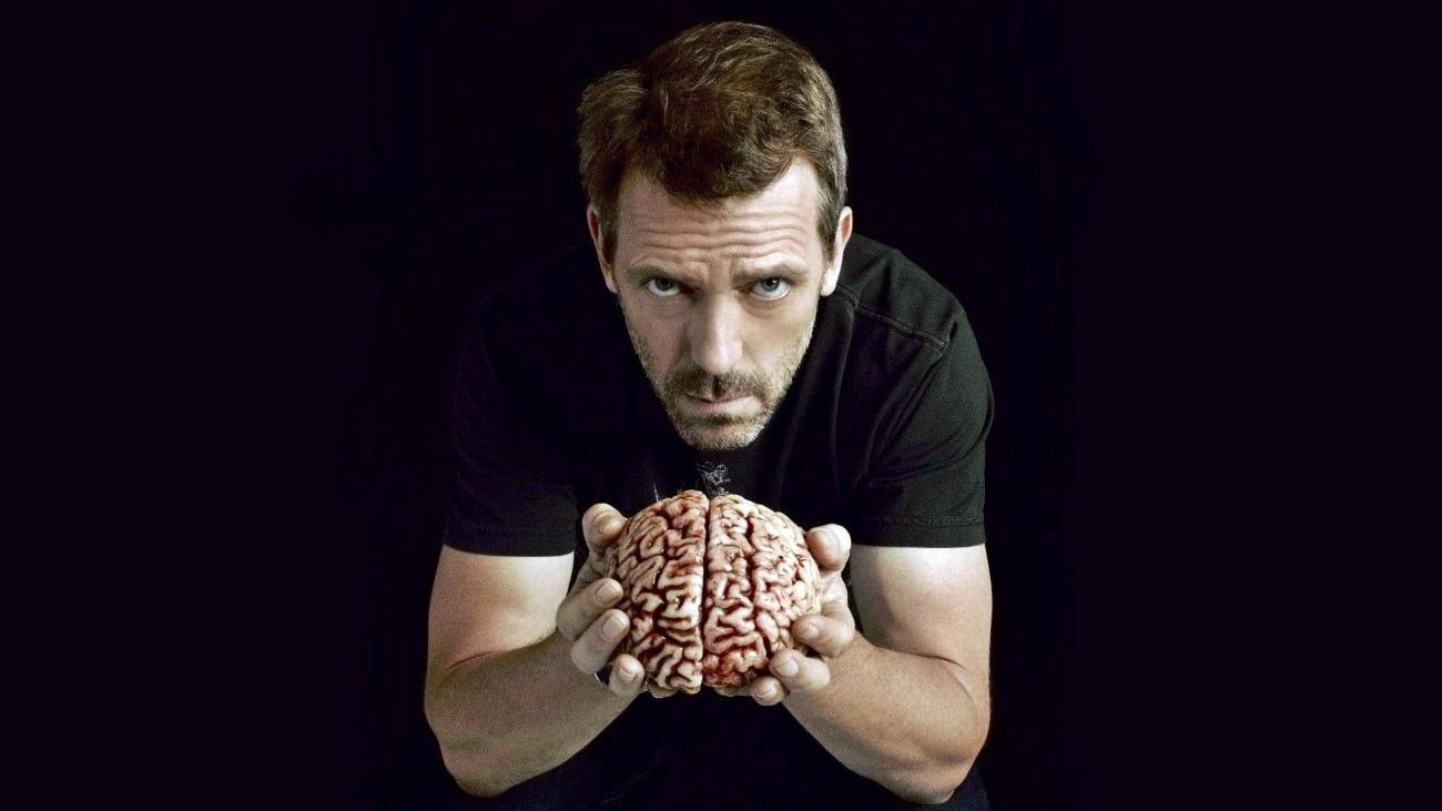 Для высокого IQ не нужен большой мозг