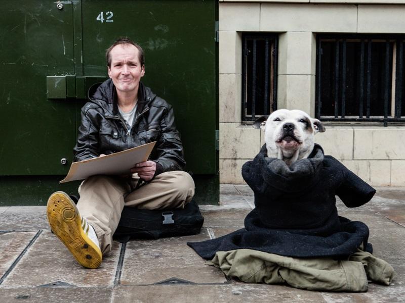 история о том, как бездомный завел собаку