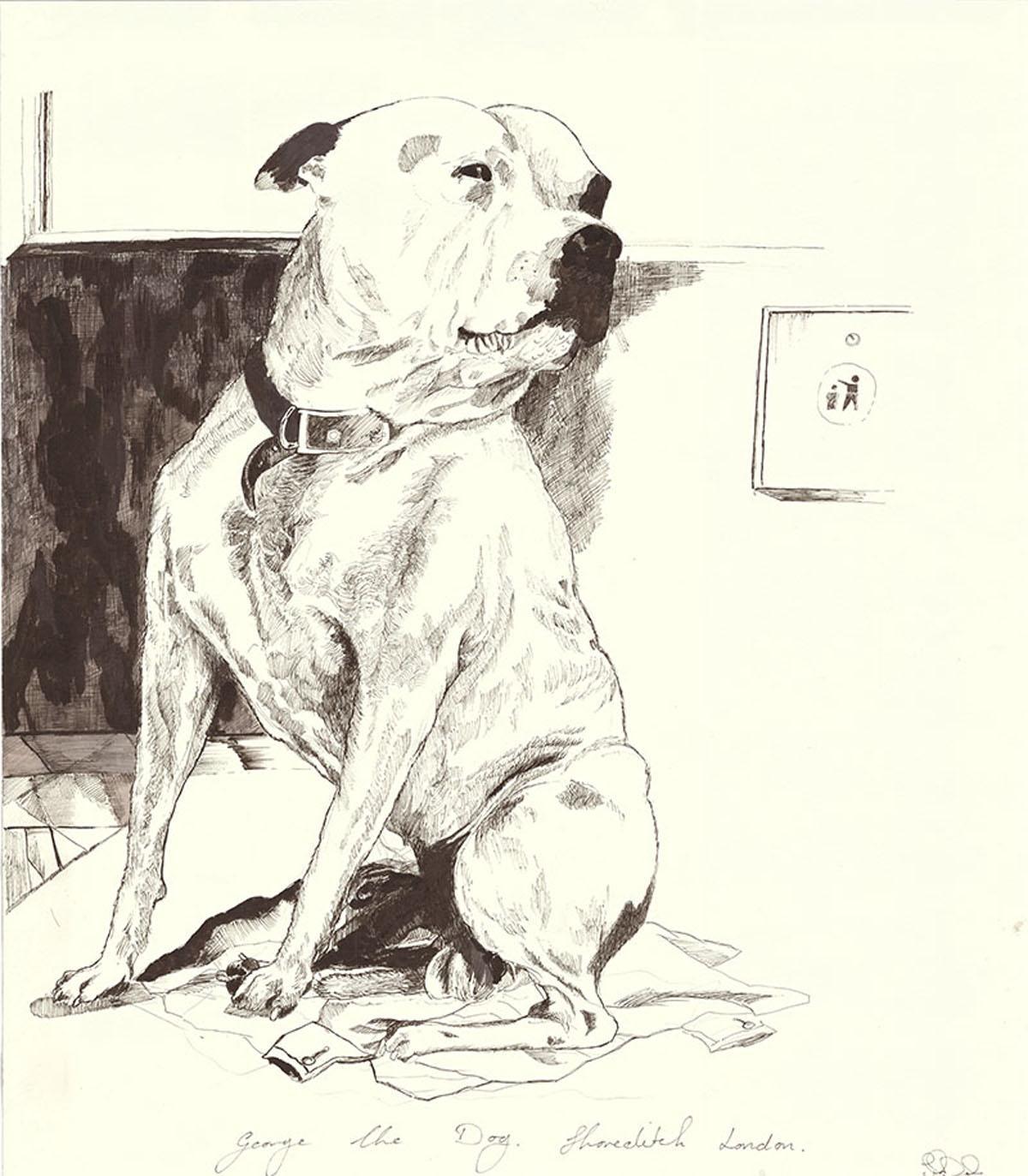 John Dolan Artist George Dog - История о том, как бездомный завел собаку – и стал знаменитым художником