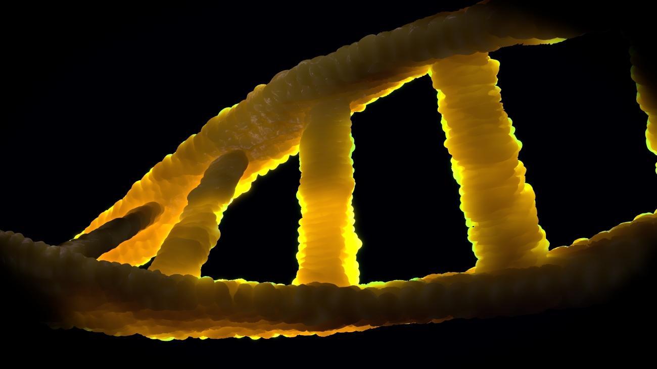 Сколько бактериальных генов уместится в одном человеке?