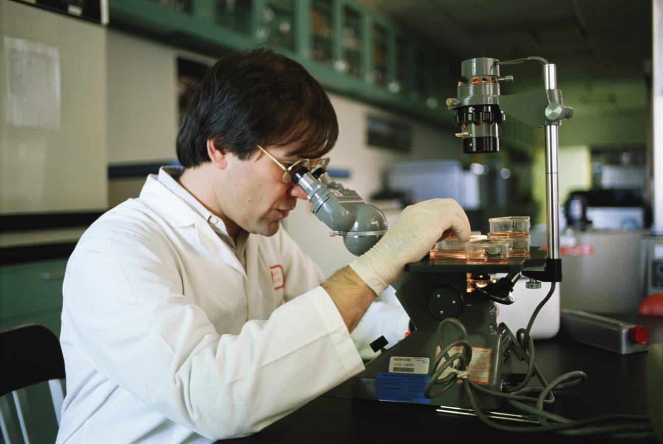 российские учёные разрабатывают способ управления клетками