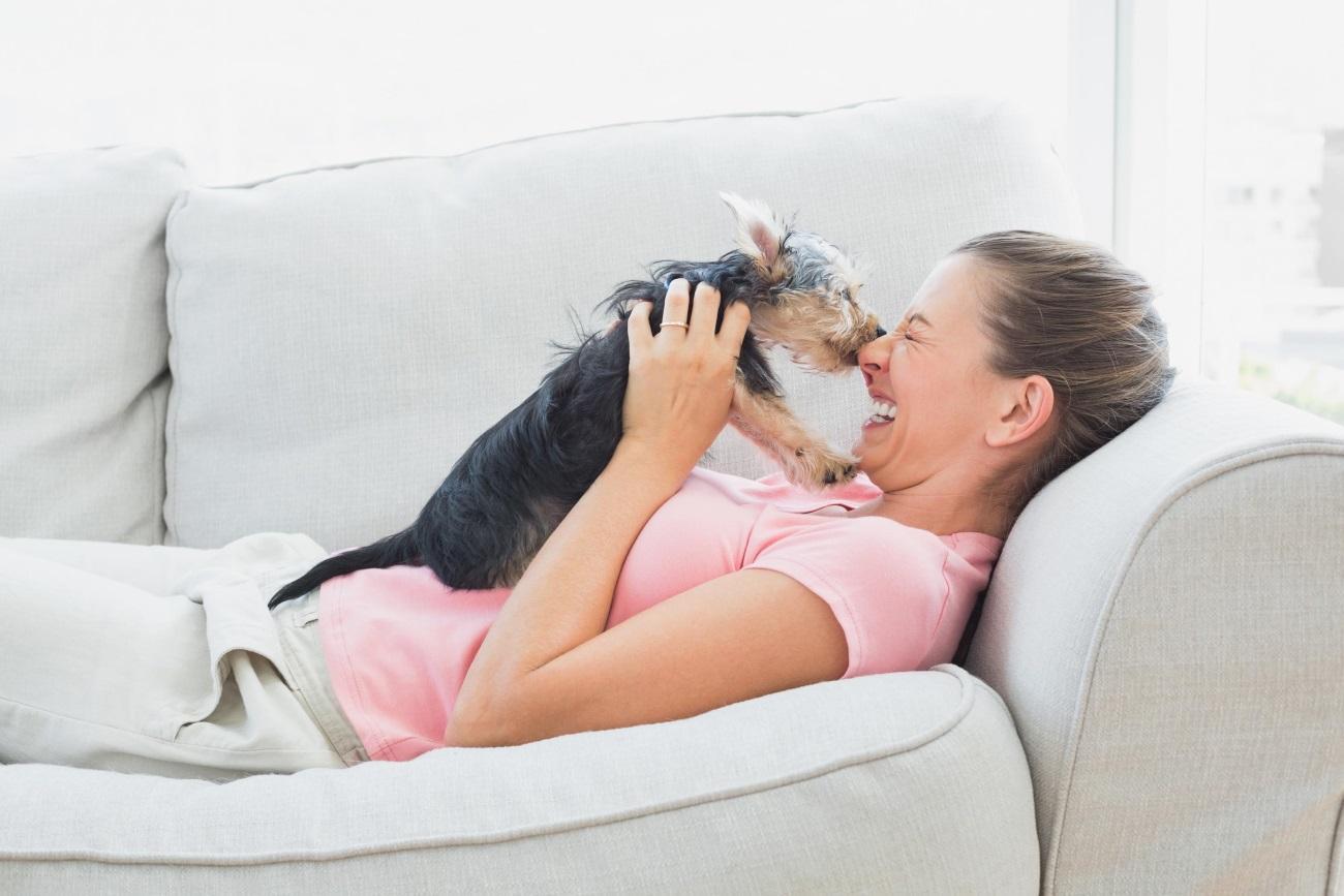 Окситоцин привлек внимание собак к улыбке человека