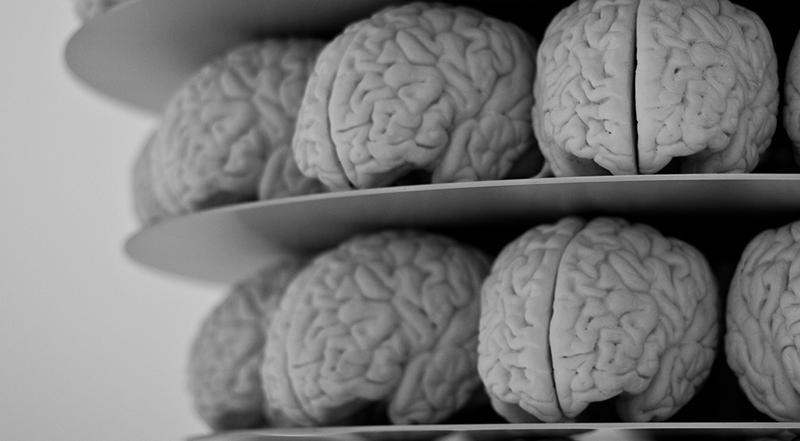 лишний вес связали с ранним старением мозга