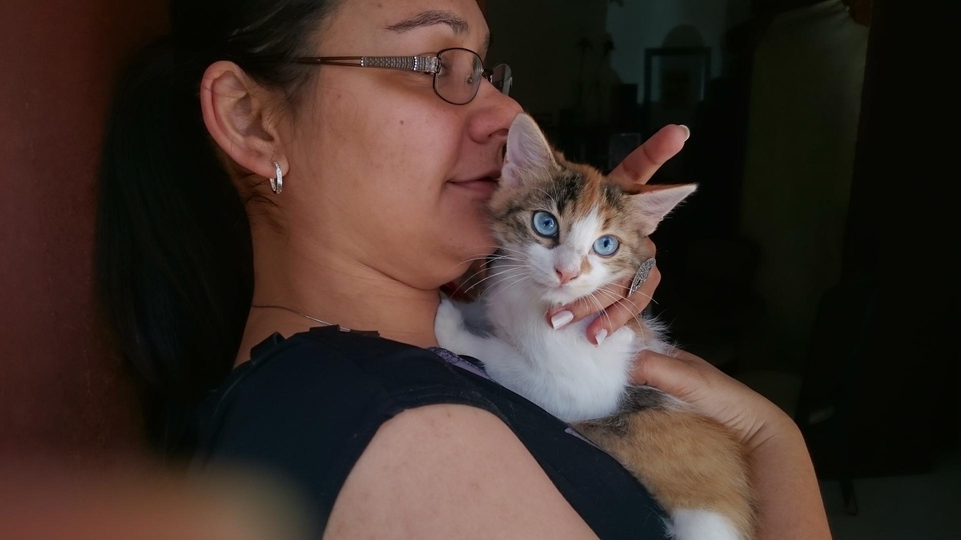 Любители кошек склонны к глаукоме