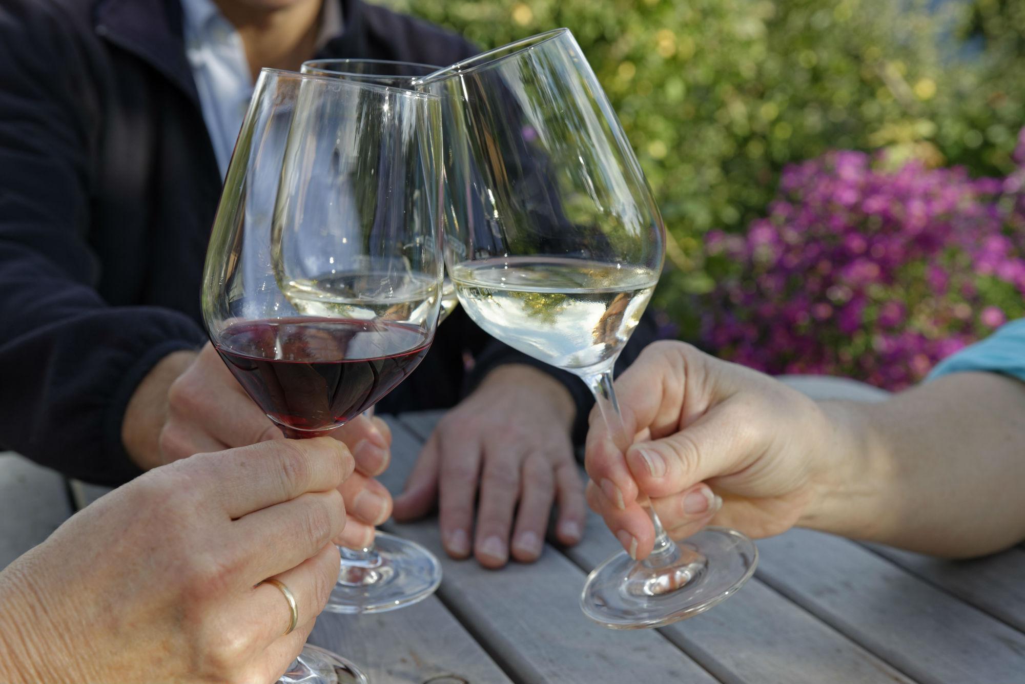 вино и кофе полезны для человека