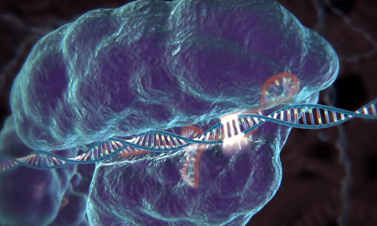 почему бы биоэтике не уйти с дороги исследований CRISPR