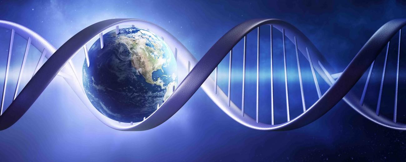 Молекула, которая умеет размножаться