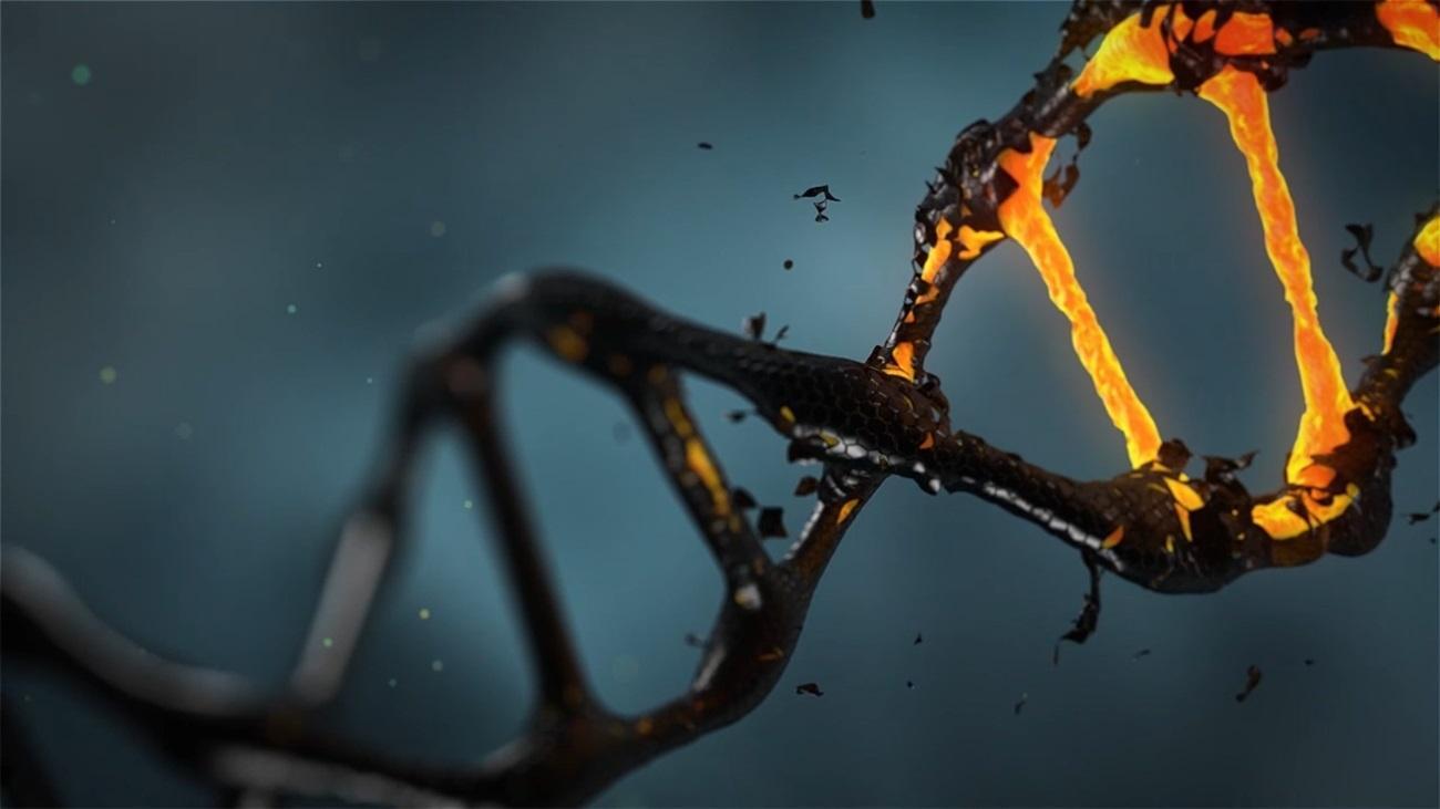 Наркотики перепрограммируют мозг на генетическом уровне