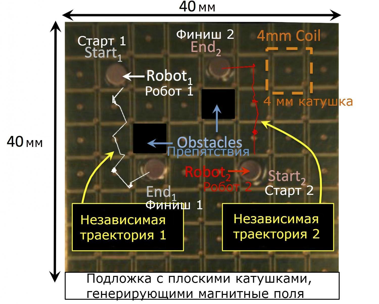 Микроботами можно управлять независимо с помощью слабых магнитных полей