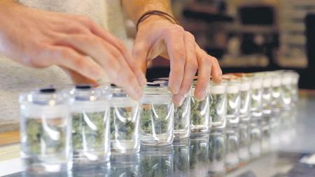 В Германии разрешили марихуану по рецепту