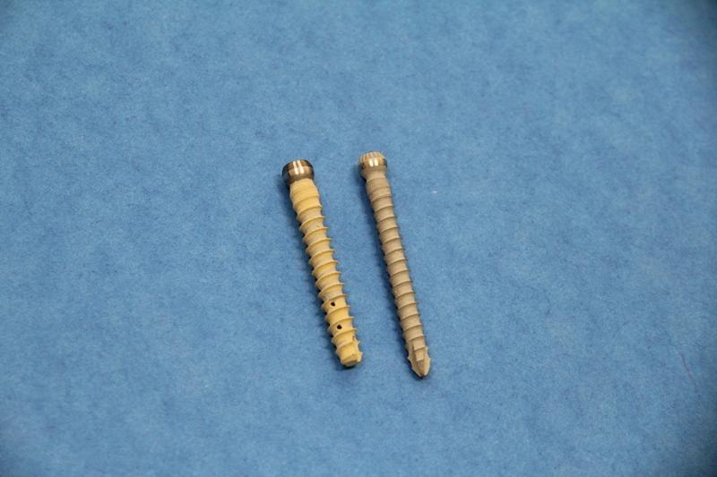 Ученые представили костный имплантат нового типа