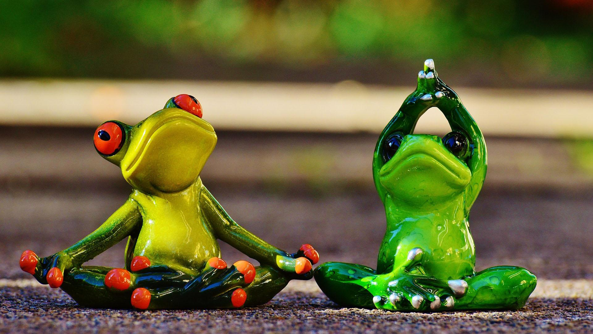 Йога: ликбез для начинающих