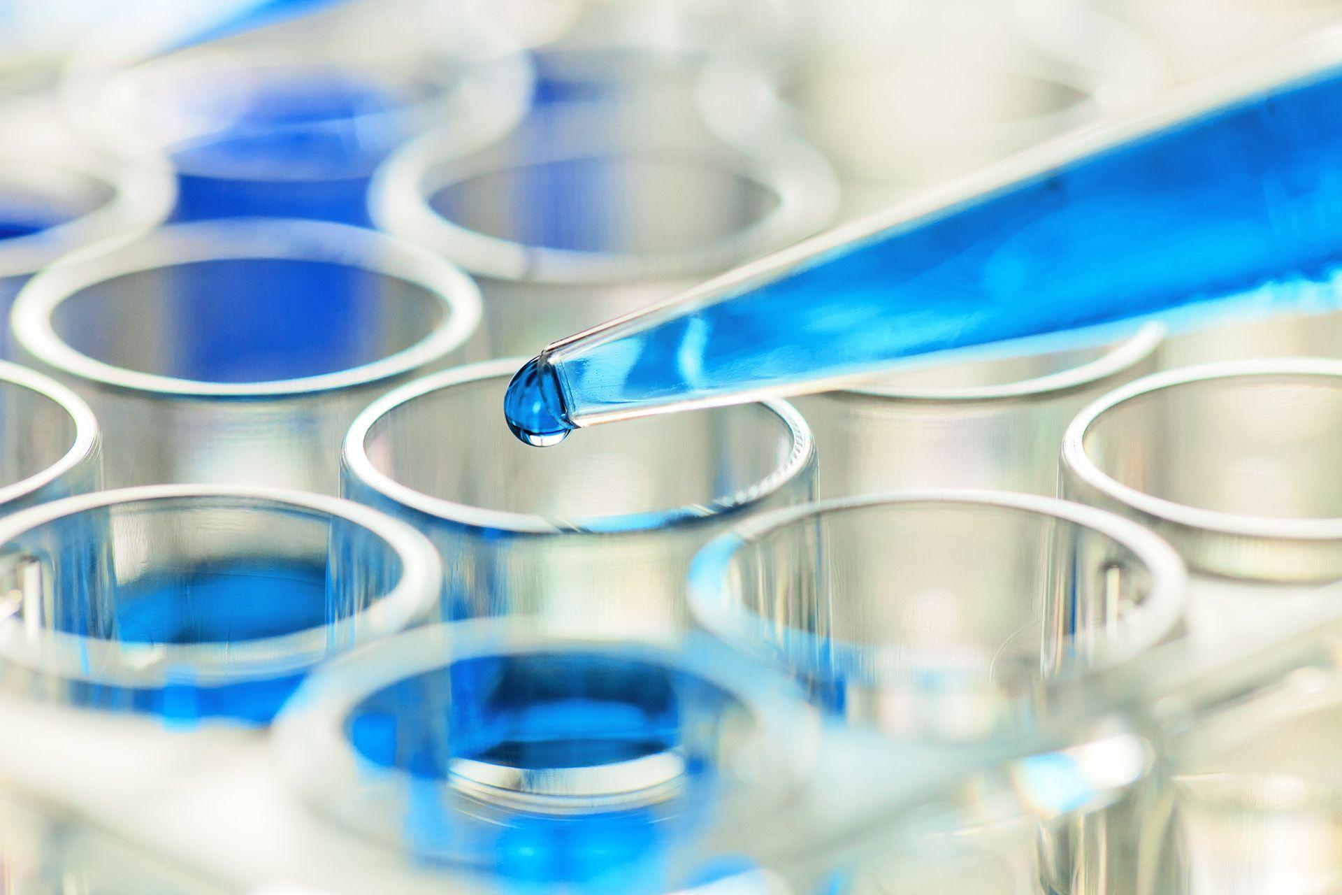 Как ищут лекарства от рака