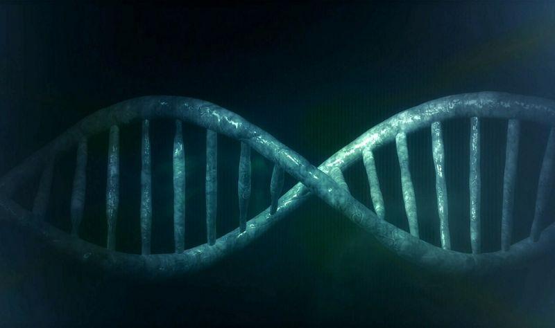 лаборатории генетического тестирования