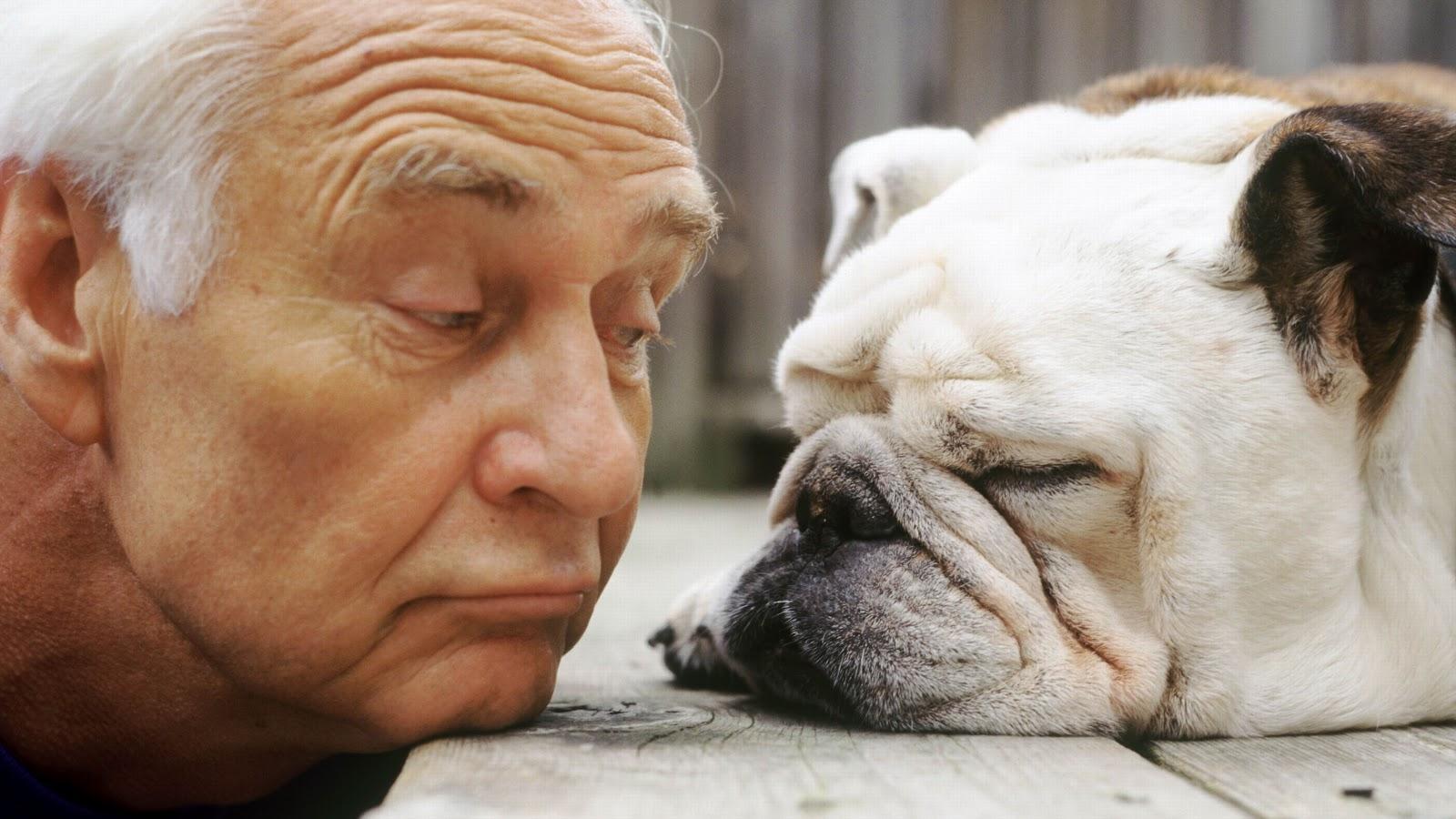 Исследовано старение животного мира