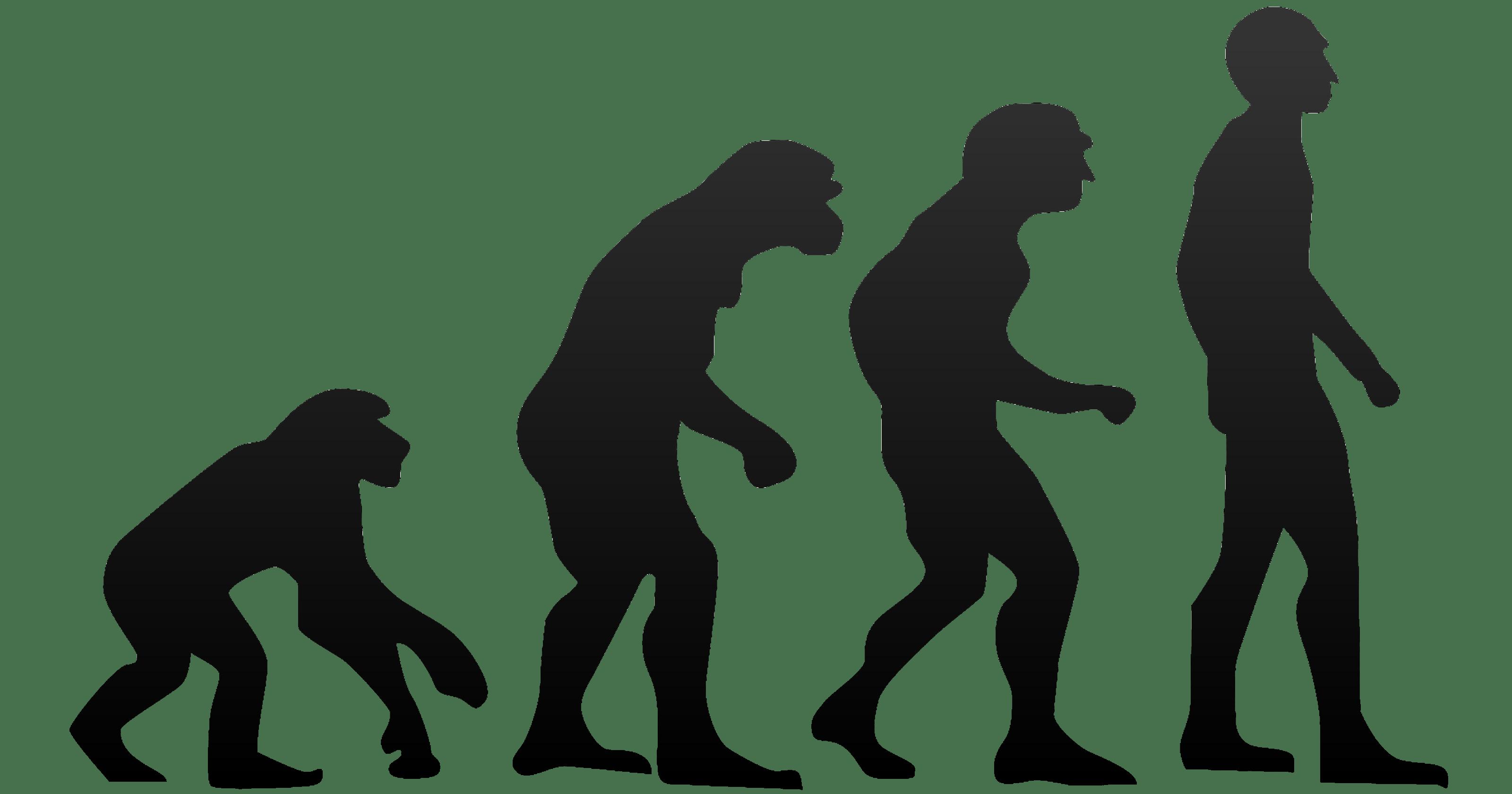 Новое древо жизни заставляет усомниться в правоте Дарвина