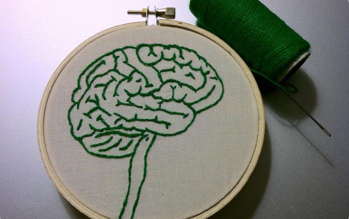 Ученые призвали людей жертвовать свой мозг науке после смерти