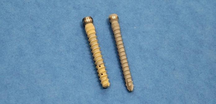 implant21 - Специалисты ТПУ представили костный имплантат нового типа