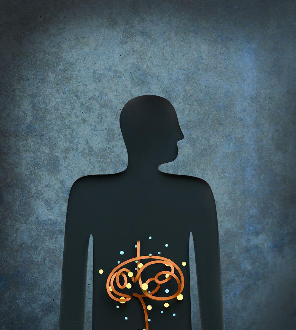микробы помогают производить серотонин в кишечнике