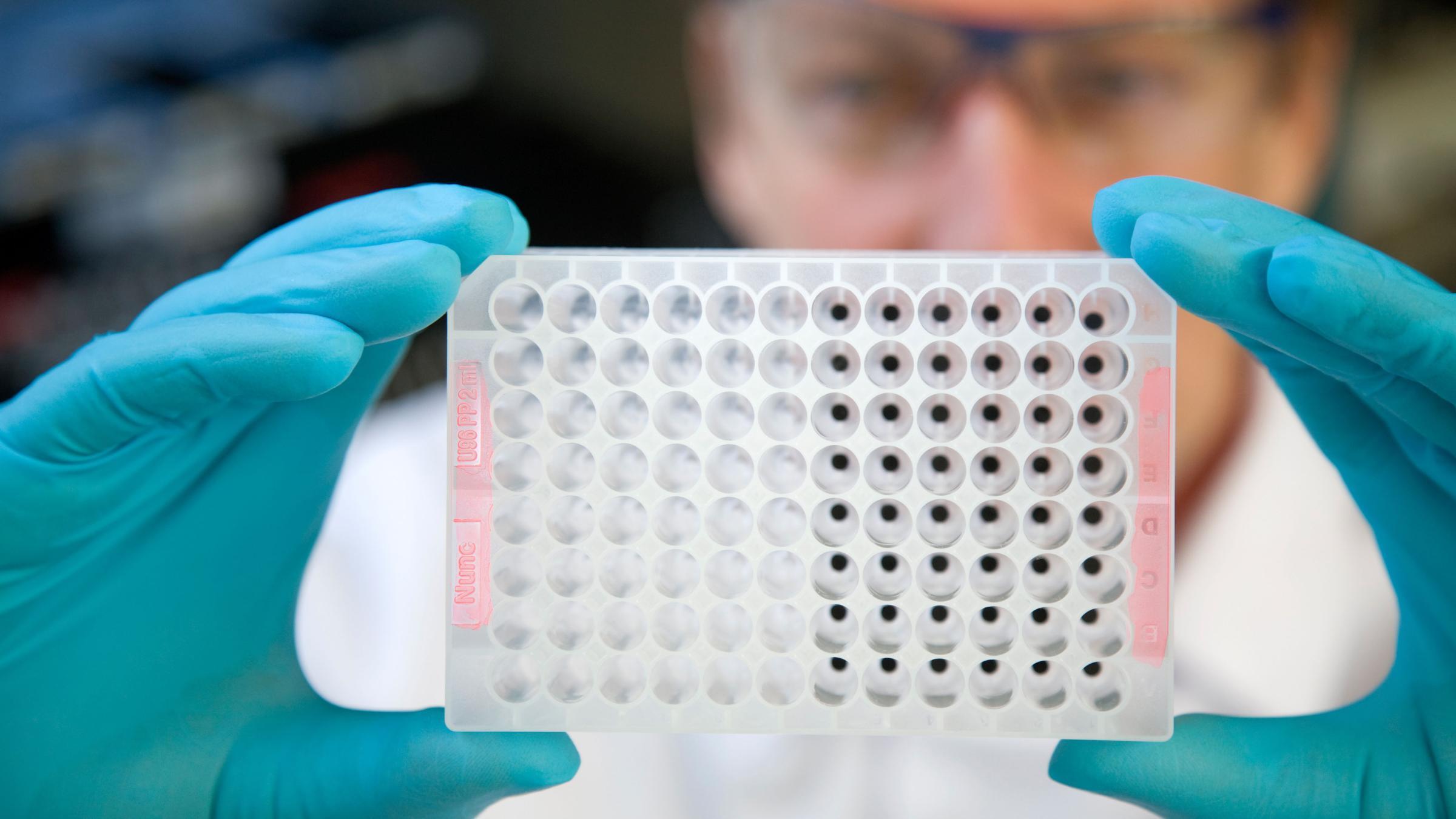 Особенности молекулярной рыбалки, или Как ищут лекарства от рака
