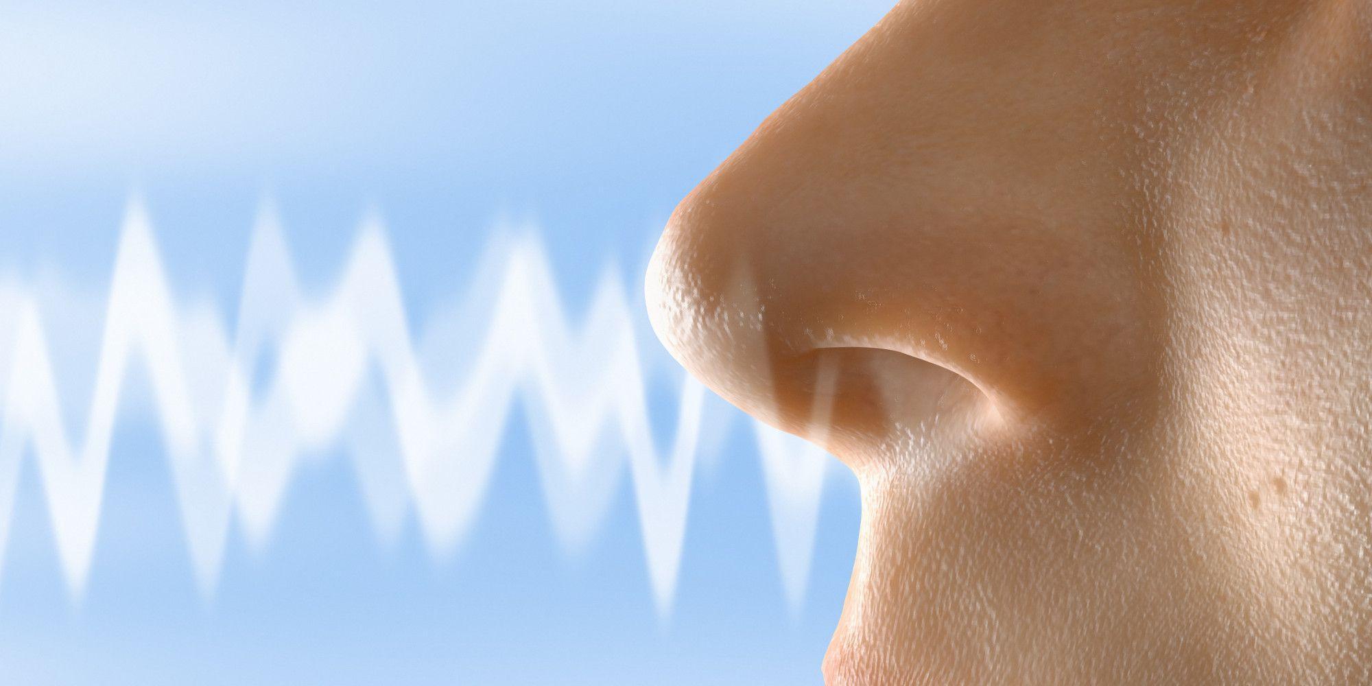 Плохой нюх — предвестник слабоумия