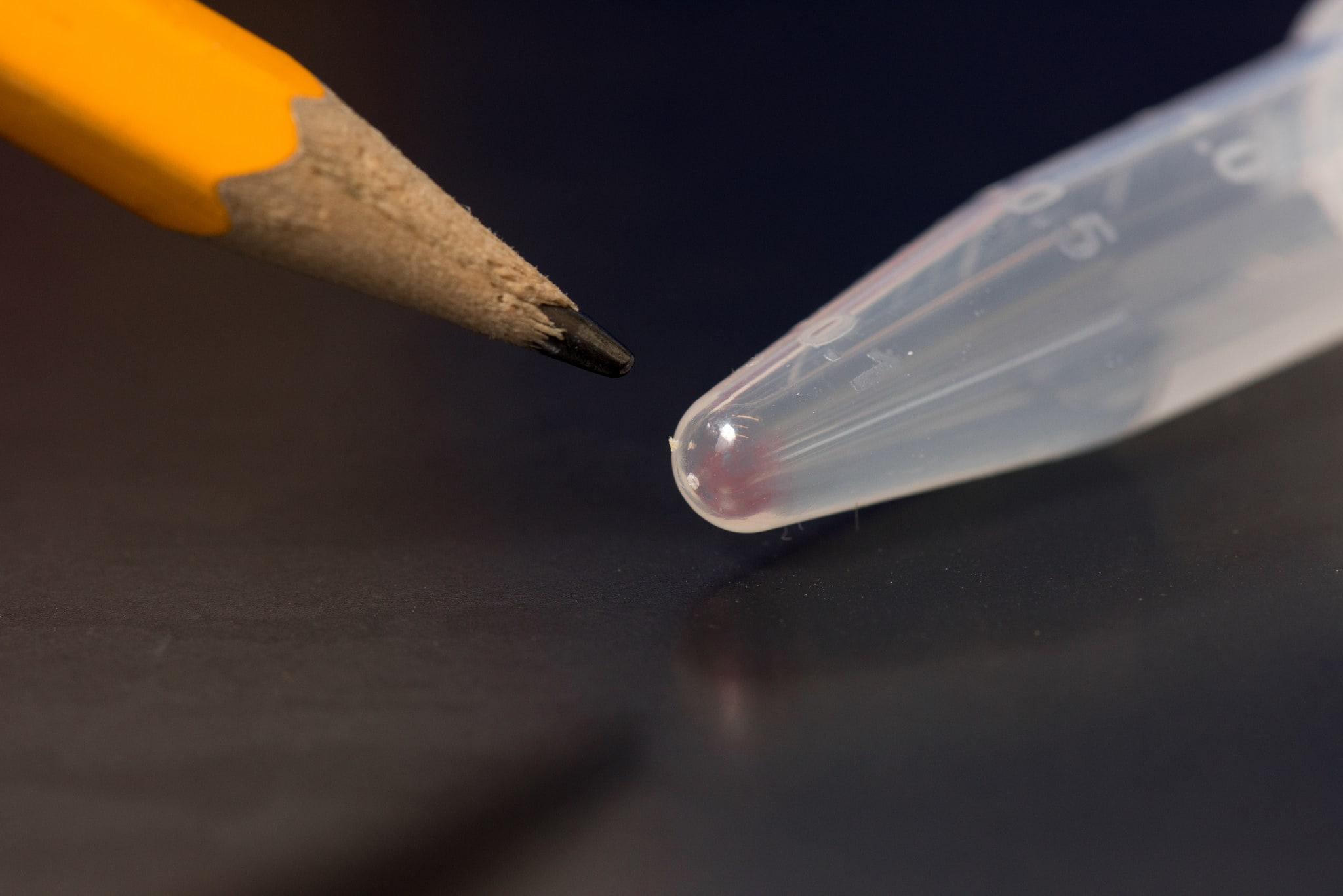 Ученые записали в ДНК рекордные 200 мегабайт данных