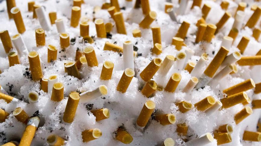 50 процентов курильщиков не считают привычку вредной