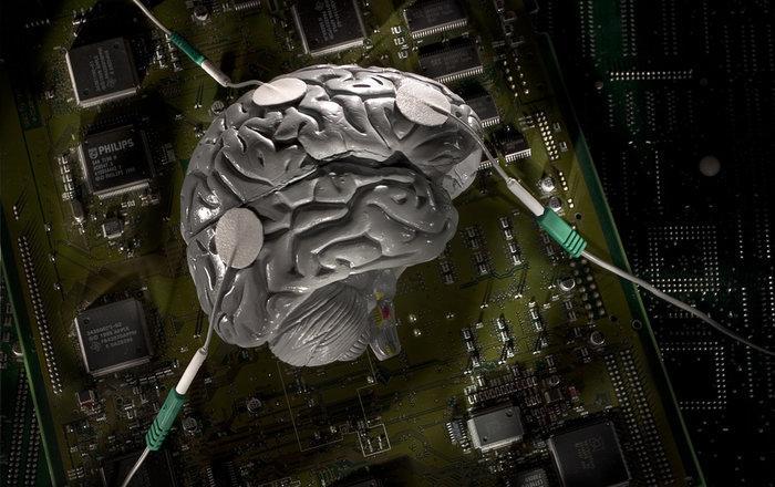 большой мозг