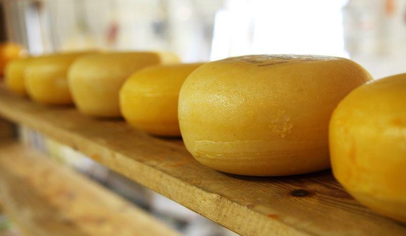 сыр губит женщин